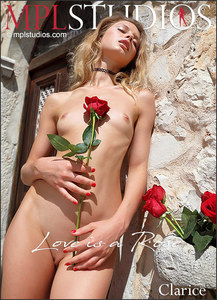 MPLStudios - Clarice - Love is a Rose