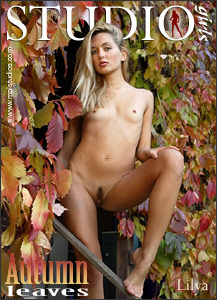 MPL Studios - Lilya - Autumn Leaves